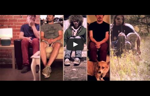 5 videos