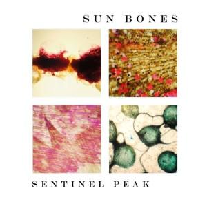 Sun Bones cover