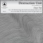 Destruction Unit - YabYum - Arizona Music Blog