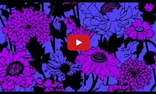 5 rad music videos