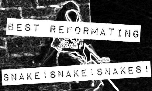 reformatting snakes 00