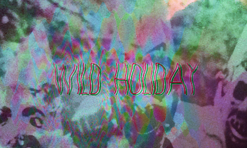 The Noise Floor: Wild Holiday