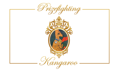 Prizefighting Kangaroo 500