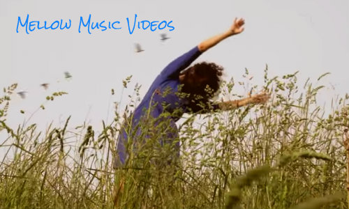 eclectic music videos 500