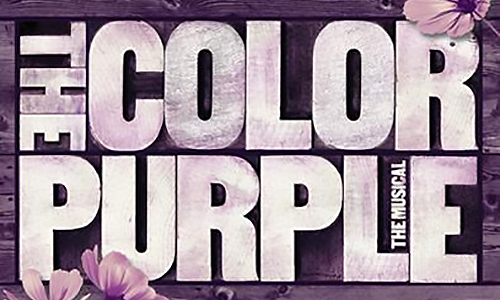 color purple 500