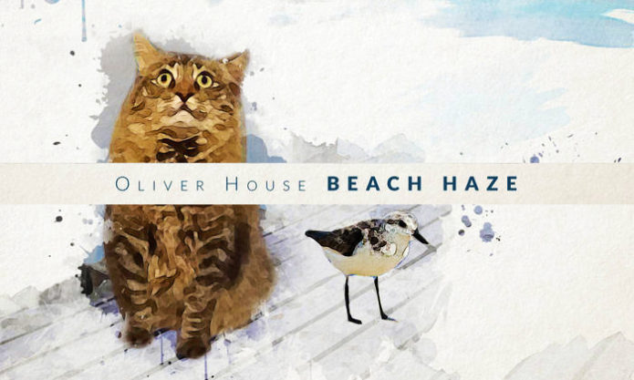 oliver house 700
