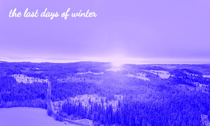 winter spotify playlist 700