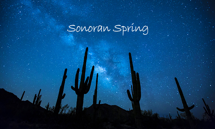 sonoran spring spotify playlist 700