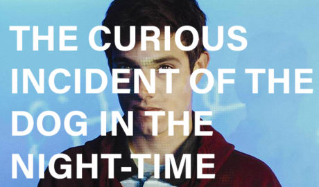 curious incident 700